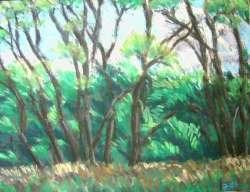 Bäume am Wiesenrand 66 x 50,5 cm