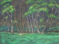 Waldblick I, 81 x 61 cm