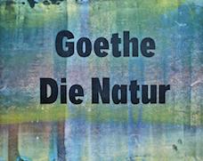 Buchobjekt: Johann Wolfgang Goethe – Die Natur